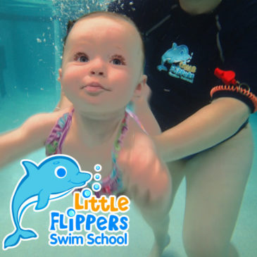 Coming Soon! The Little Flippers Blog!
