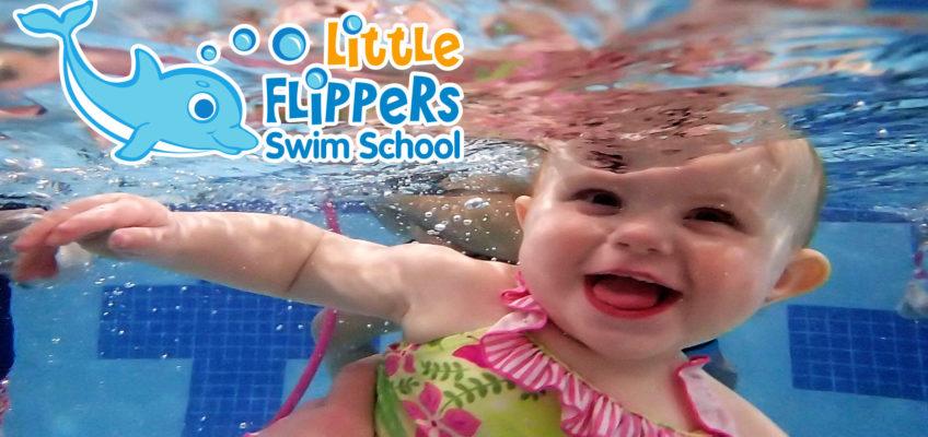little flippers swim school