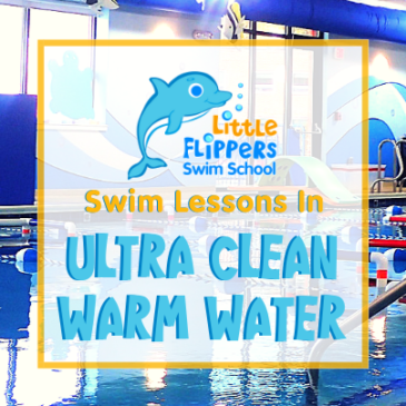 Swim Lessons in Ultra Clean, Warm Water