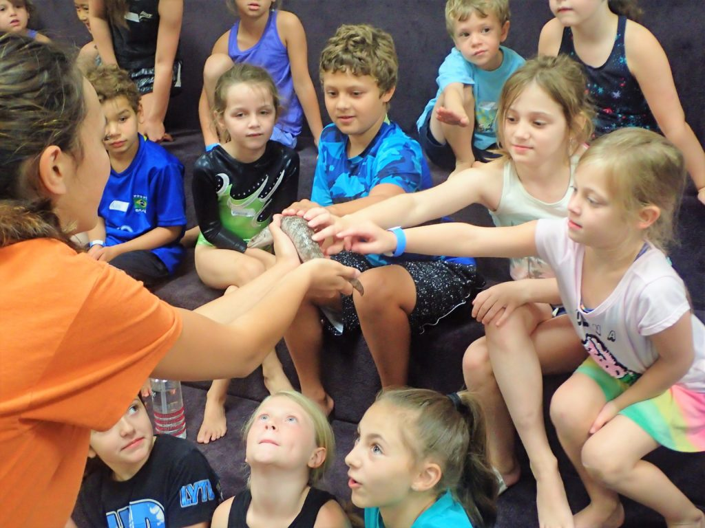 Keeping Your Children Active During The Summer – Little